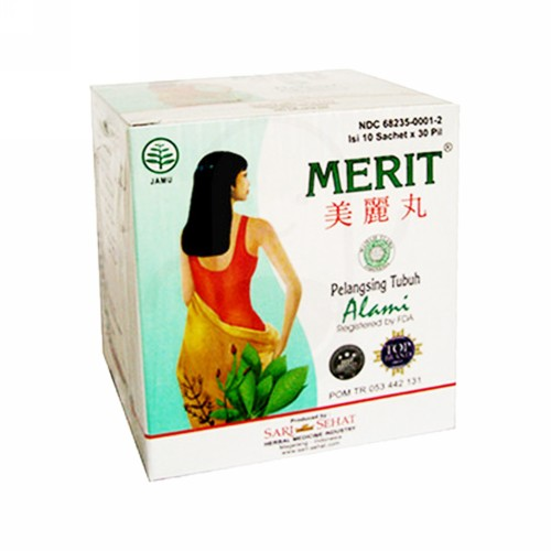 MERIT PILL BOX 10 SACHET (ISI 300)