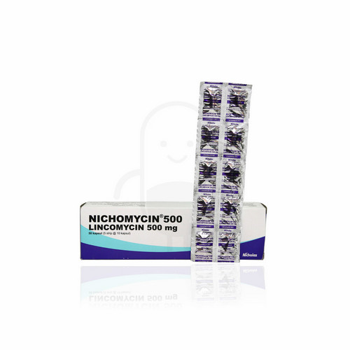 NICHOMYCIN 500 MG KAPSUL STRIP