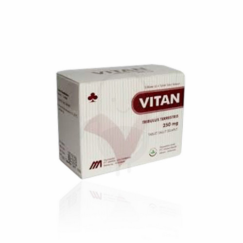 VITAN 250 MG BOX 20 TABLET