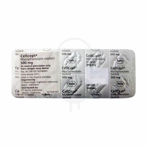 CELLCEPT 500 MG STRIP 10 KAPLET