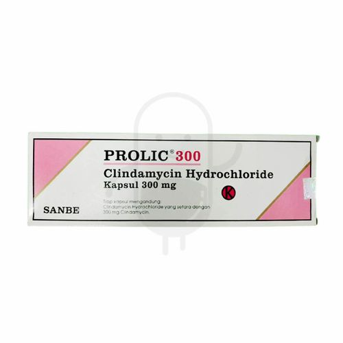 PROLIC 300 KAPSUL BOX
